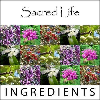 Sacred Life Active Ingredients